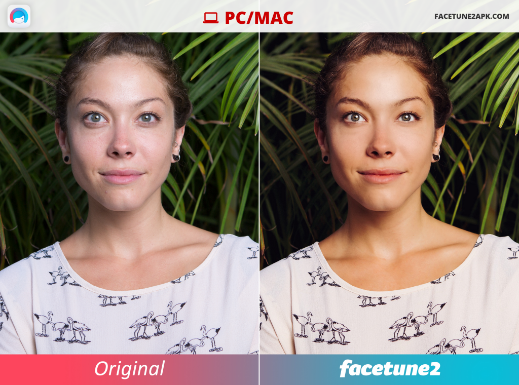 Facetune 2 for MAC or PC Download Online