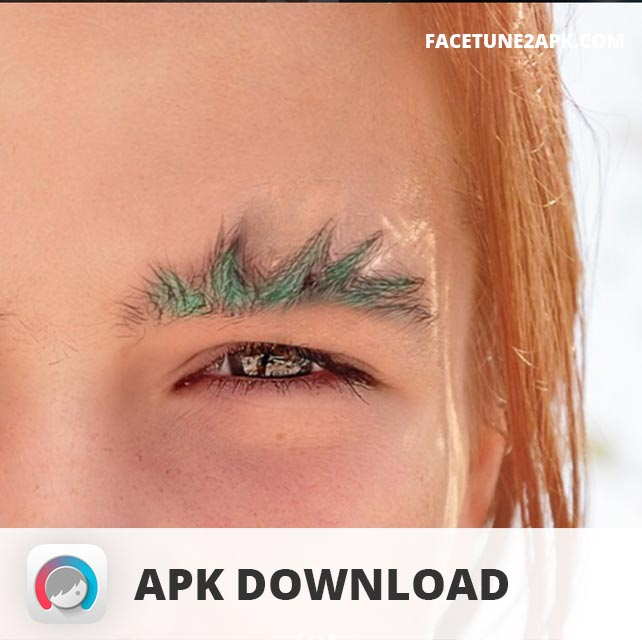 Facetune APK Download Free